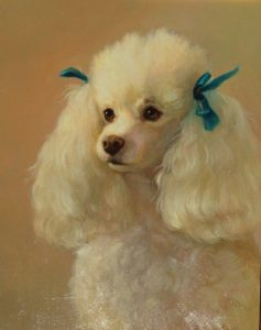 White French Poodle sm-1.jpg