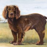 past pet portrait commisions done by Marty Whaley Adams