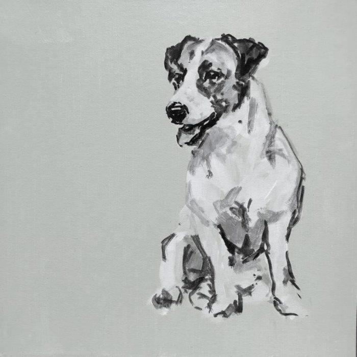 Jack Russell sml